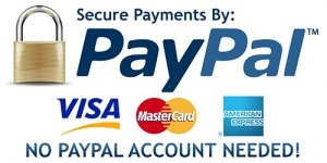Online Mindfulness Course PayPal Payments
