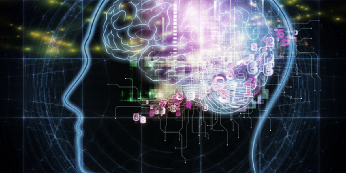 Exploring the neuroscience of mindfulness